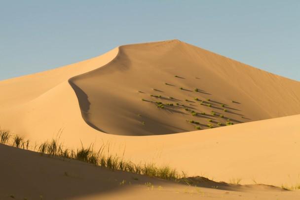 Mongolei Duenen