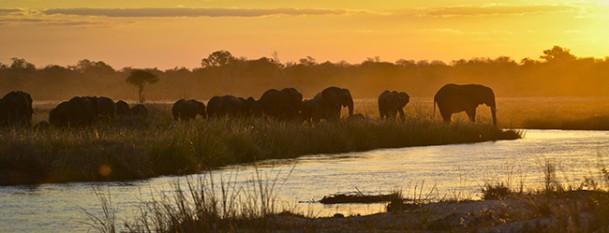 namibia bild 650 5